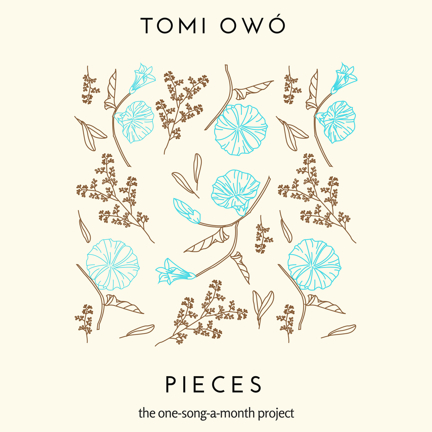 Pieces project